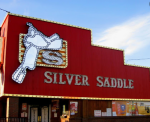 silver saddle.PNG