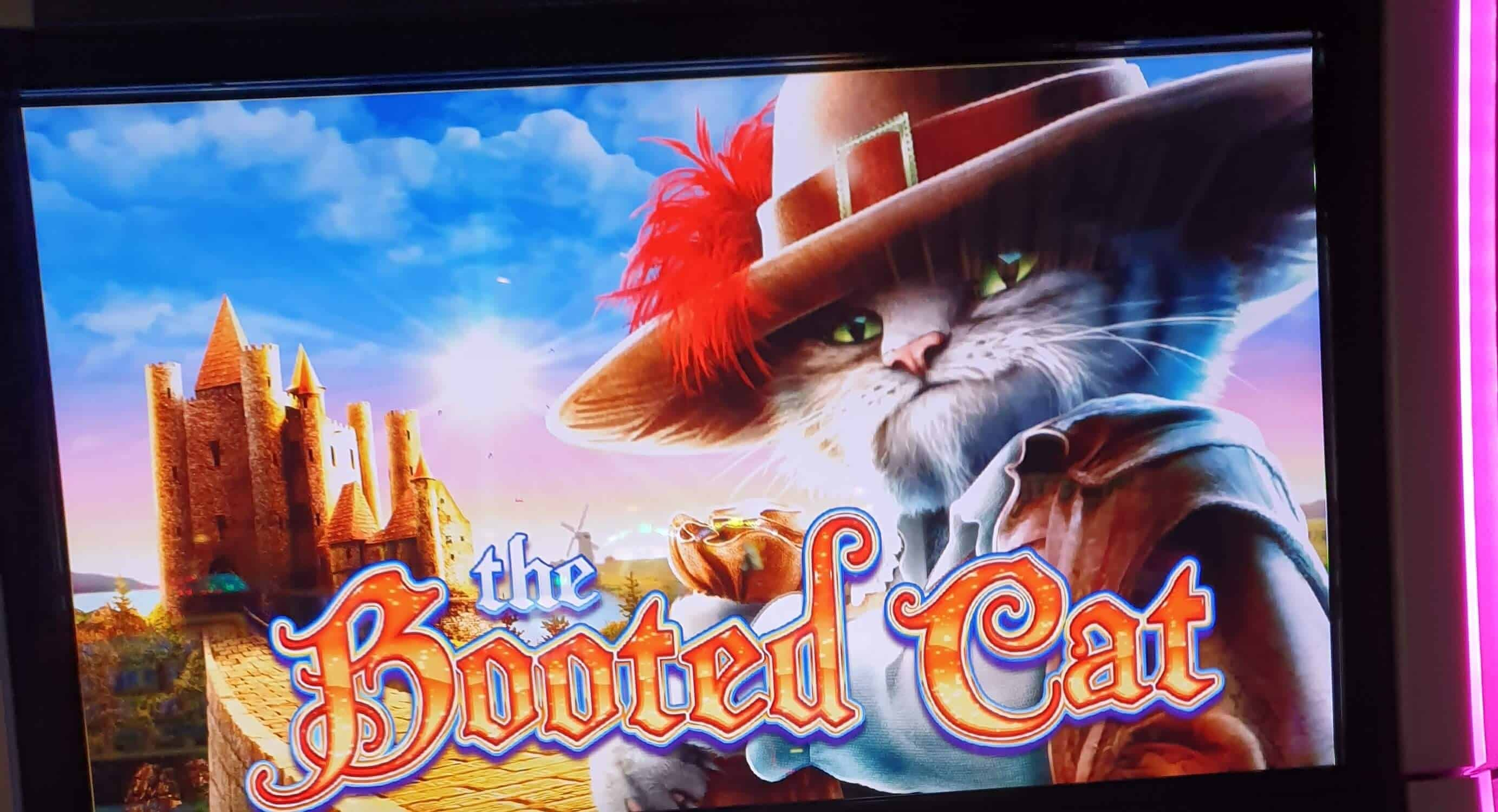logo The Booted Cat